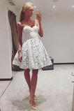 Φερμουάρ επάνω Αμάνικο Φυσικό Δαντέλα αγαπημένος Κοκτέιλ φορέματα