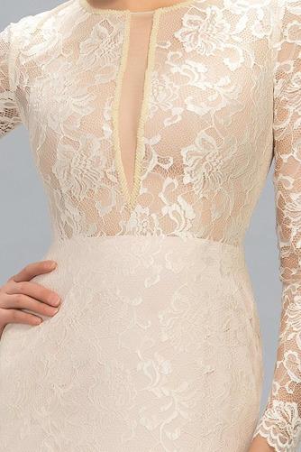 Ντραπέ Φθινόπωρο Δαντέλα Φυσικό Ψευδαίσθηση Βραδινά φορέματα - Σελίδα 4
